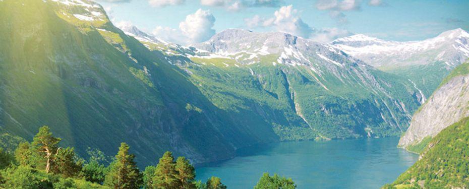 Cruise vistenfjord