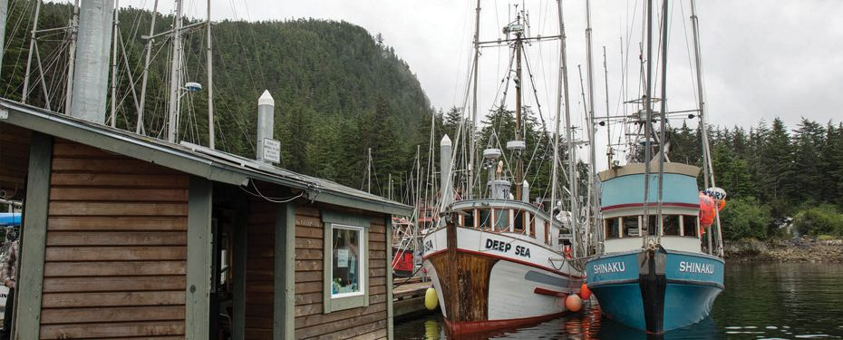 Elfin Cove & George Island, Alaska