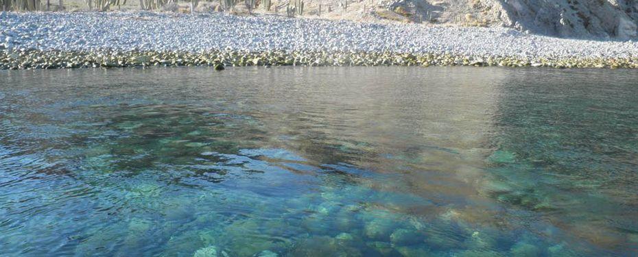 Explore Isla Santa Catalina, Mexico