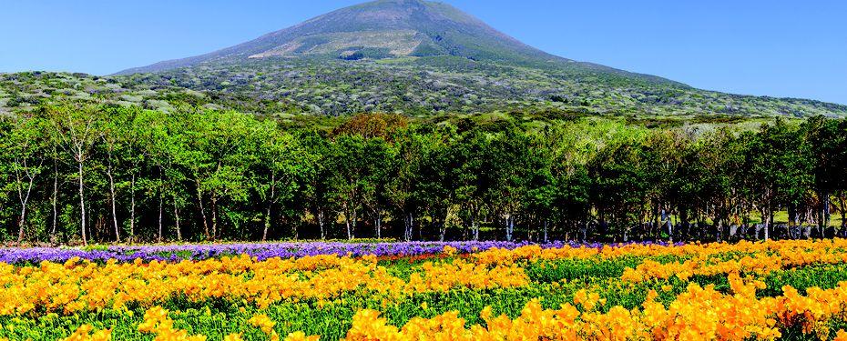 Hachijo-jima