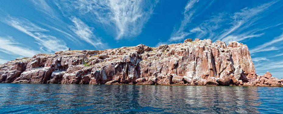 Los Islotes and Espiritu Santo, Mexico