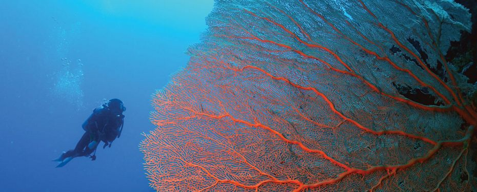 Pudaidori Island