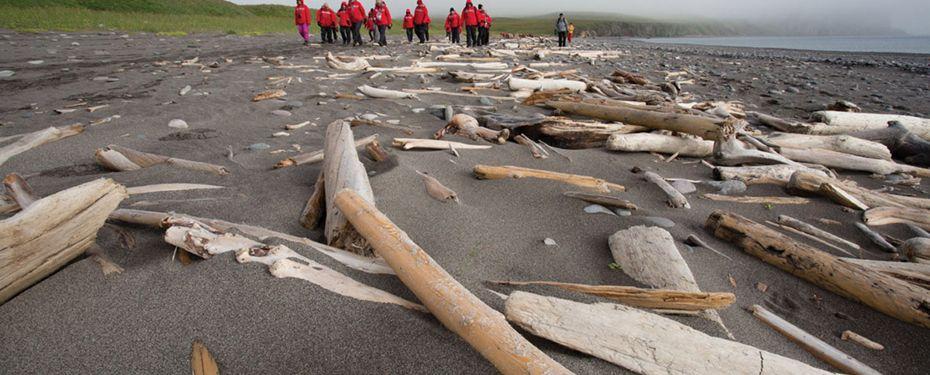 St.Matthew Island (Alaska)