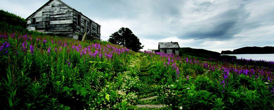 Unga Village, Alaska