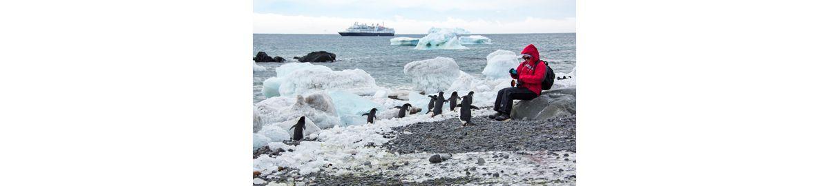 desert cold penguin prison