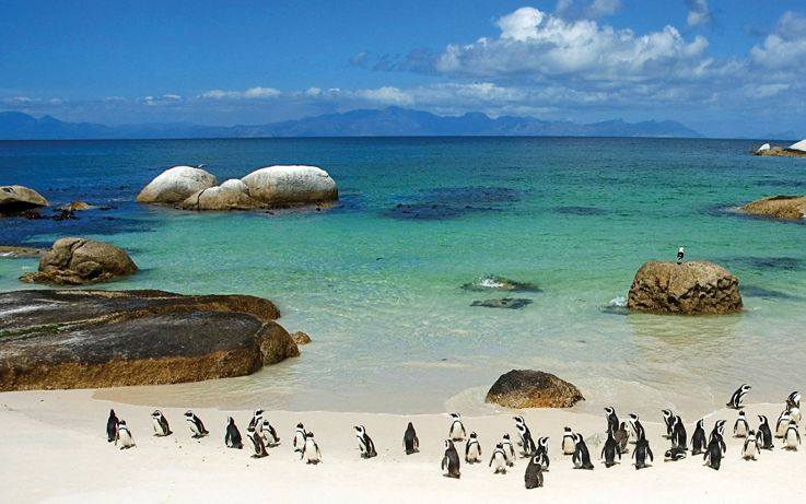 Silversea Africa and Indian Ocean Luxury Cruise - Cape Town