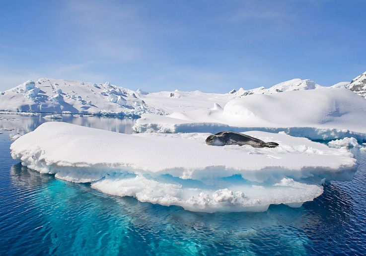 Silversea Antarctica Luxury Cruise