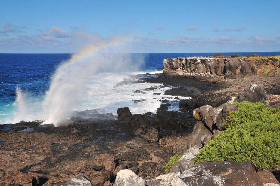 Silversea Galapagos Luxury Cruise - Punta Suarez