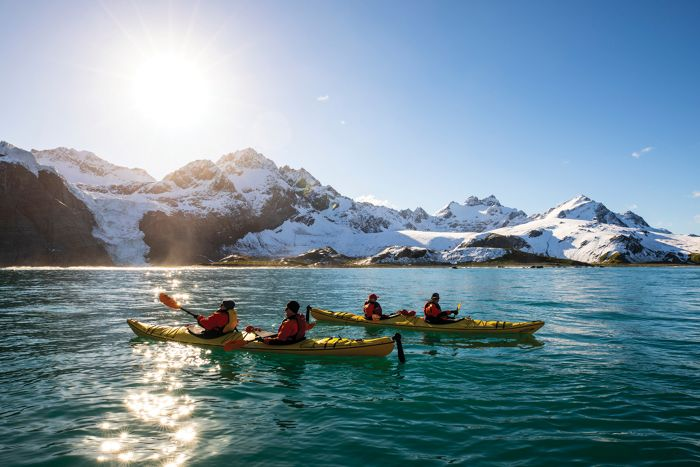 MEET THE LOCALS: ANTARCTICA IS WHERE WILDLIFE REIGNS SUPREME