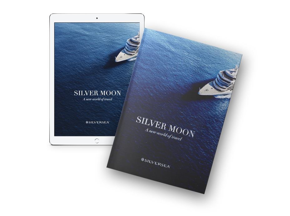 New Silver Moon