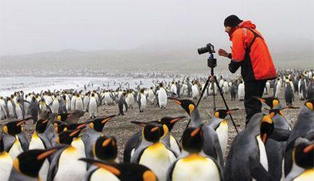 Specialty Expeditions to Remote Destinations | Silversea