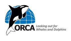 SILVERSEA SE ASOCIA CON ORCA PARA COLABORAR EN LOS ESFUERZOS DE CONSERVACIÓN Y ENRIQUECER LA EXPERIENCIA DE LOS VIAJEROS