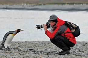 SILVERSEA LAUNCHES NEW PHOTOGRAPHY ACADEMY IN ANTARCTICA