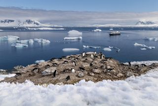 L1050432, Antarctica, Silversea, 10/2019, ANTARCTICA-10013  Silversea Final Select  Retouched_Emily Rogers 02/19/2020