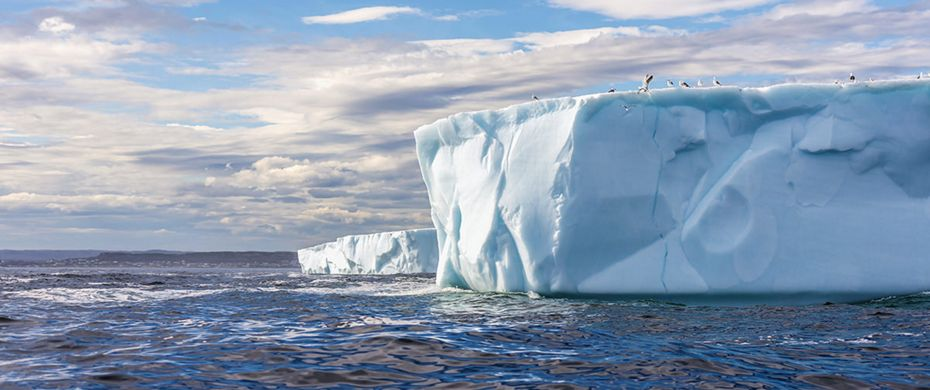 Silversea Luxury Cruises - Antarctic Sound