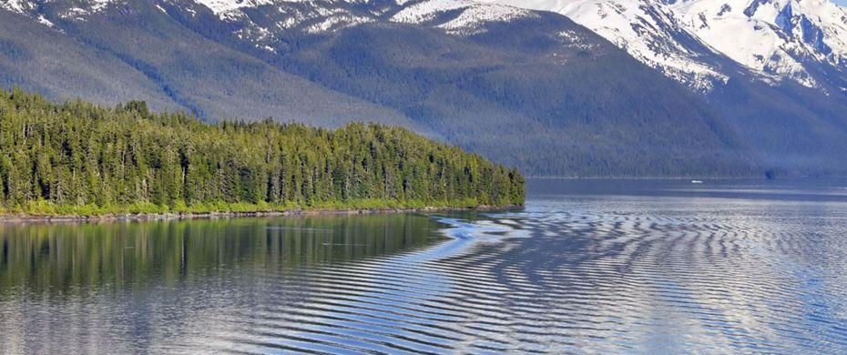 ENDICOTT ARM (Alaska)