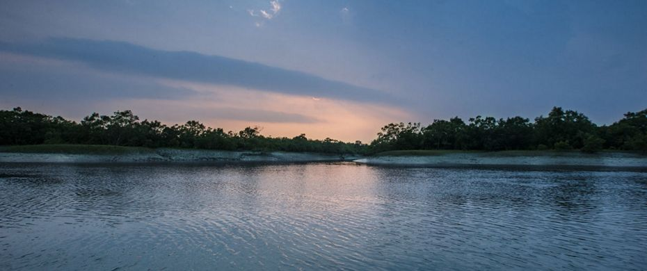 Expedition Sundarbans Reserve