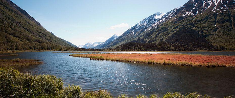 HOMER (Alaska)