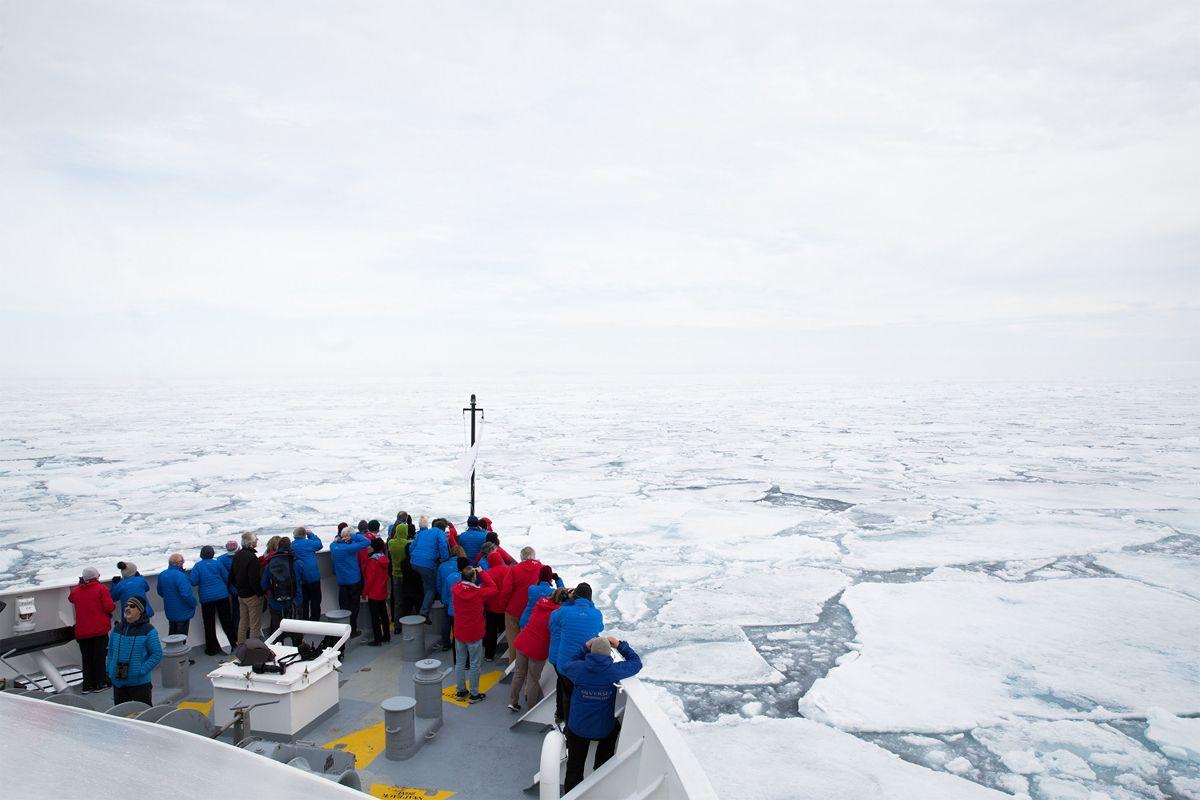 Resultado de imagem para cruising ice