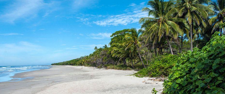 Isla Tortugas