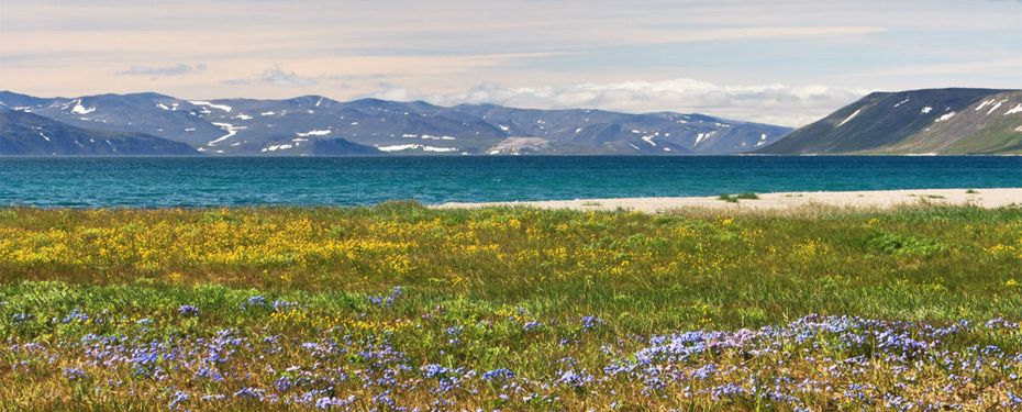 Lavrentiya Bay
