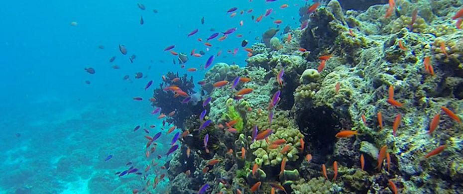 Lumalihe Island, Marove Lagoon