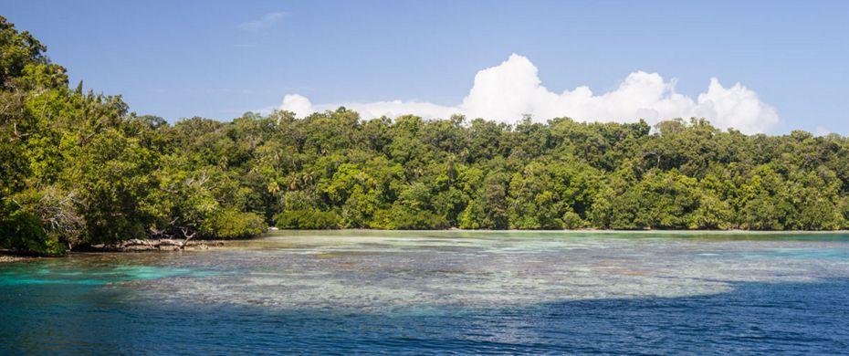 Marovo Lagoon/Vangunu Island