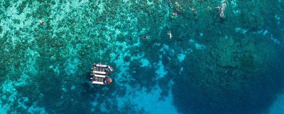 Middleton Reef