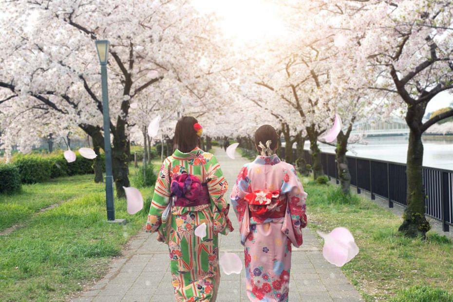 4904 - Bali nach Tokyo