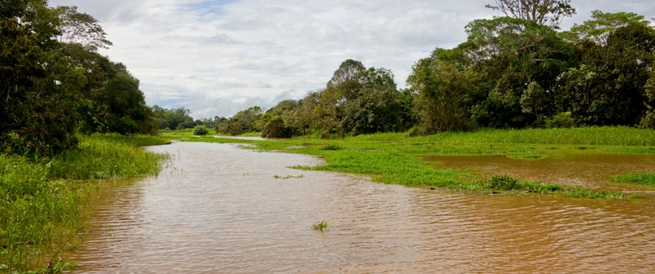 Rio Balaio