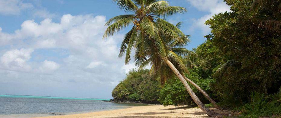 Quotes On Fringing Reefs: SATAWAL (Yap)