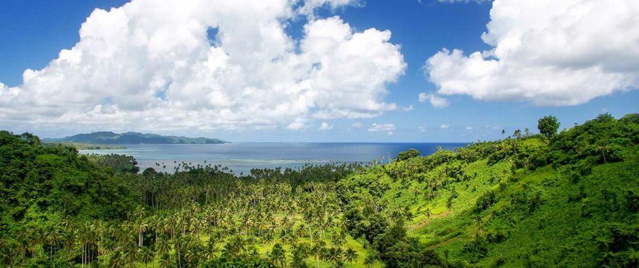 SOMOSOMO (Taveuni)