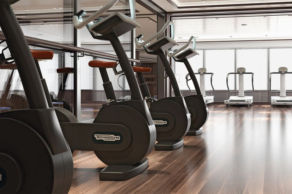 Silver Muse - Fitness Centre